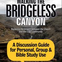 Walking the Bridgeless Canyon Study Guide